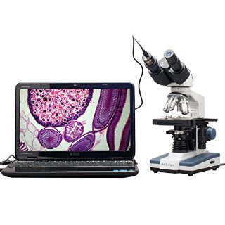 Recensioni dei clienti per AmScope B120C-E1 40X-2500X LED Digital binoculare Microscopio w 3D Fase + 1.3MP fotocamera USB, [Importado de UK] | tripparia.it